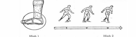 11 bài tập bóng đá