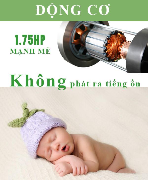 động cơ may chay bo điện Đại Việt DV-1351