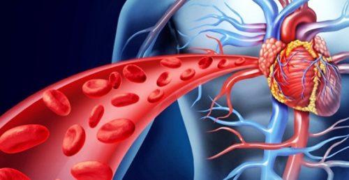 ghế massage giúp tăng tuần hoàn máu