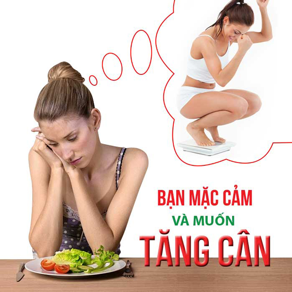 tang can cung may chay bo