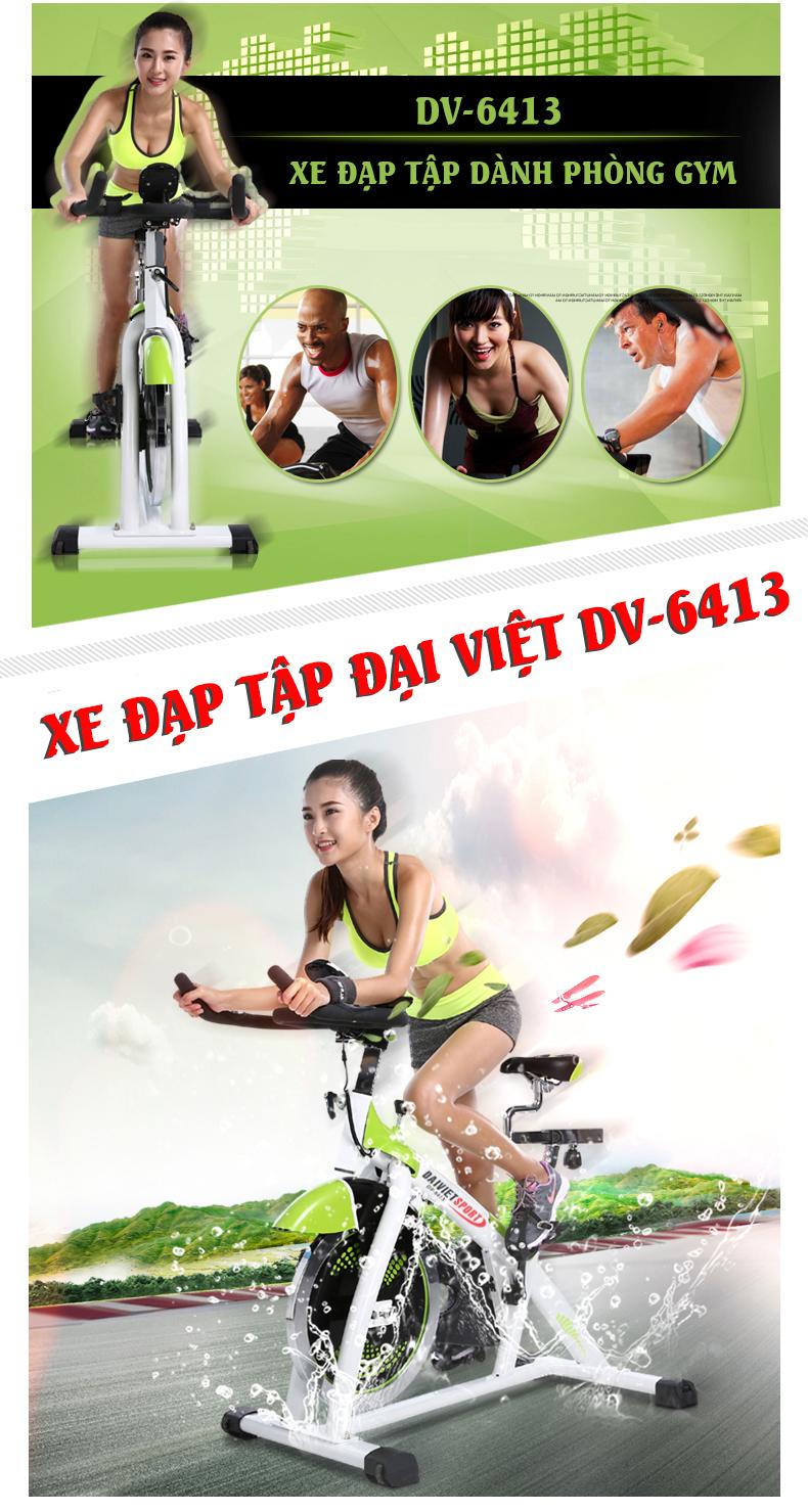 xe đạp tập gym DV-6413